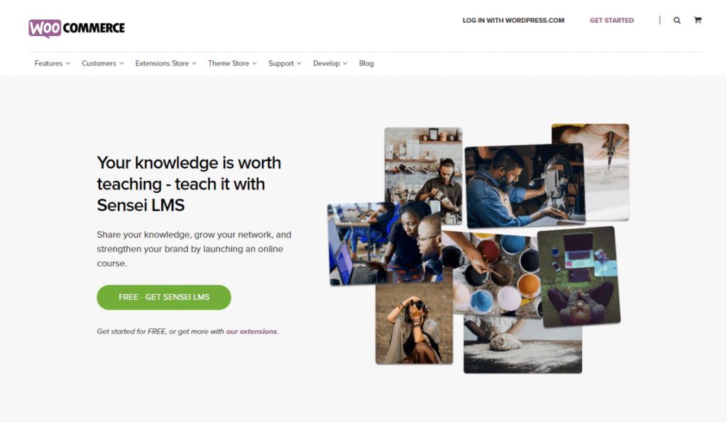 Sensi: WordPress Learning Management System Plugins