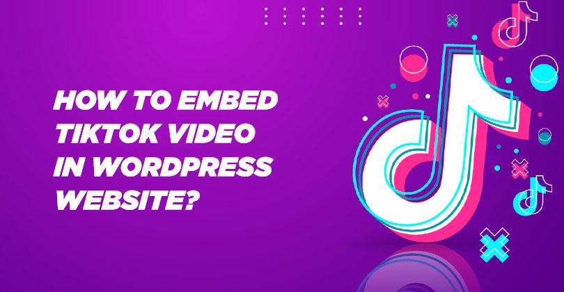 How to Embed TikTok Video in WordPress Website?